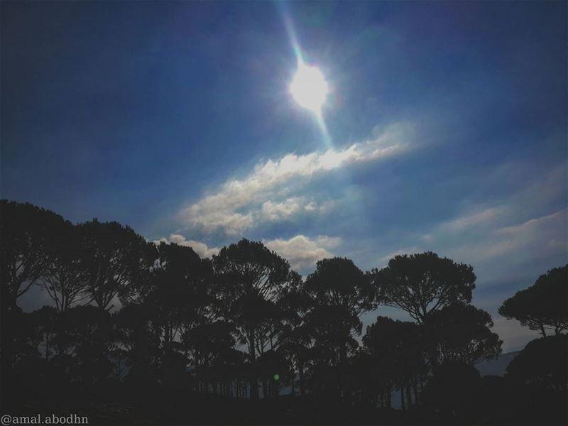 its hasbaya!!! 🍃📷 hasbaya green trees tree clouds amazing ...