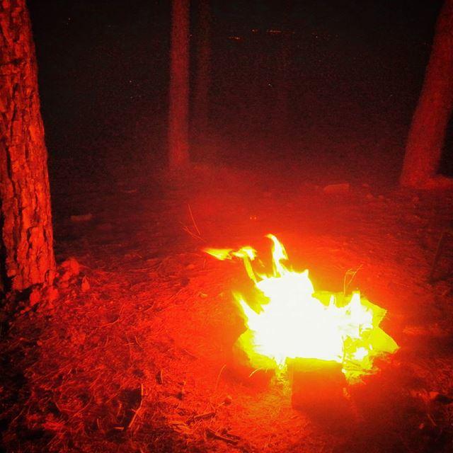 👌🌙🌌🍵 pine trees pinetrees fire stones matte hasbaya lebanonhdr... (Pine Trees of Hasbaya)