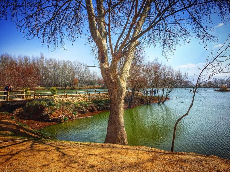 Waiting for the weekend ...😎 livelovebeirut wearelebanon lebanon... (Taanayel Lake)