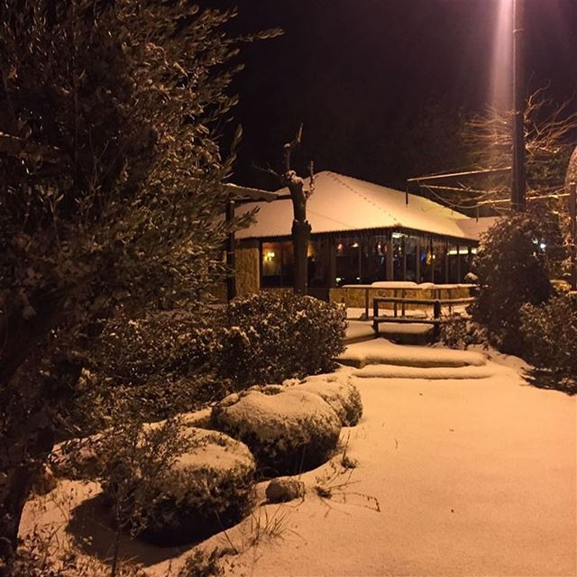 Getting whiter 😍 snow at jalsat restaurant mayrouba faraya winter ...