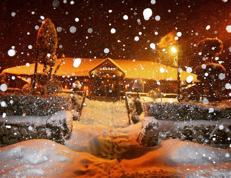 Now this is what we call a beautiful shot ! snow mayrouba cold ... (Jalsat Resto - Mayrouba)