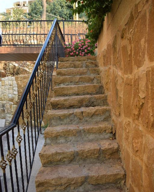 She climbed the stairs maybe too slow to reach you, she climbed them... (البساتين - الجبل)