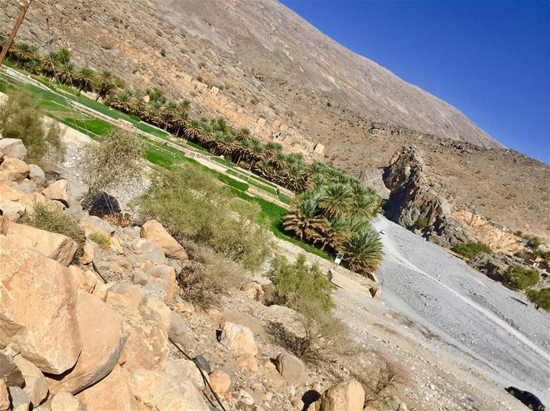 Riwagh (الرويق) an old town in Oman (al hamra district) well integrated... (Oman)