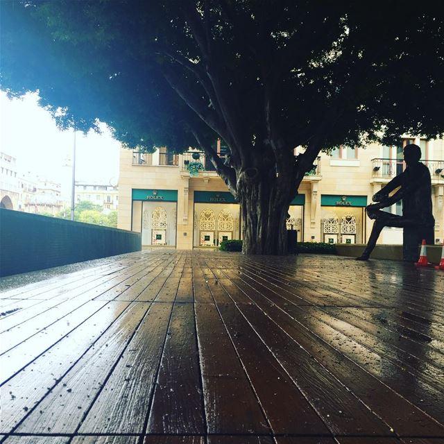 Samir kassir alone on a rainy... (Samir Kassir Garden Dt)
