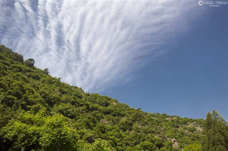 Lebanese Mountains 🌱🌲🌳🍀🌿 www.charbelfersan.com tb instashot ... (Al Chouf)
