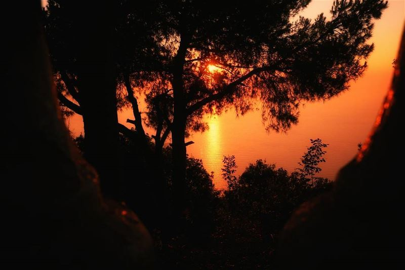 Every Sunset gives hope to the Next Day. Sun super_lebanon ... (Harîssa, Mont-Liban, Lebanon)