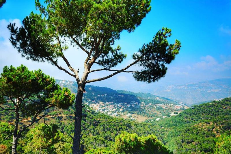 Somewhere in the heaven called Lebanon. livelovelebanon ... (Lebanon)