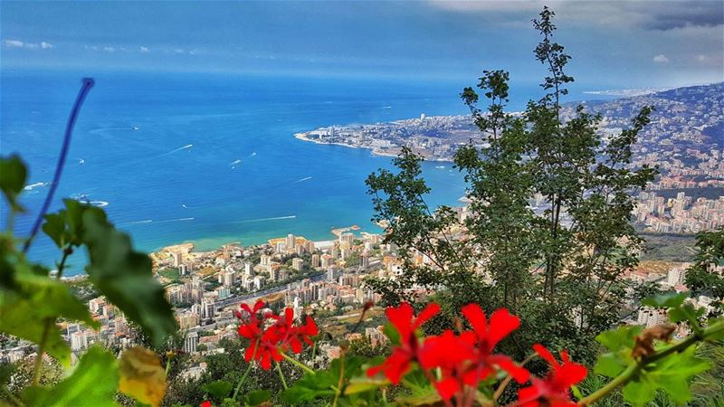 Lebanon Heaven on earth mylebanon😍 jounieh sea loves_lebanon ... (Harîssa, Mont-Liban, Lebanon)