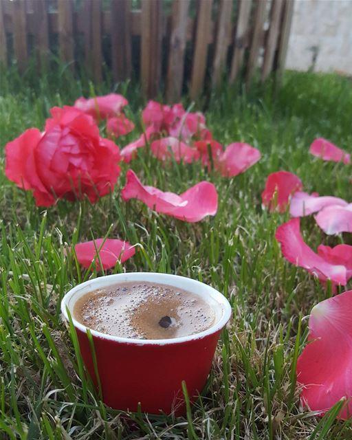 هناك أشياء بداخلنا تسقط وتتكسر بصمت .... قهوة قهوتي تصويري روقان...