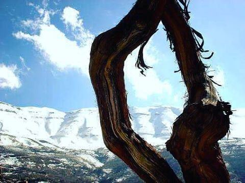 When Bekaa Kafra is covered in snow.. winter lebanon snow white ... (Bekaa Kafra)