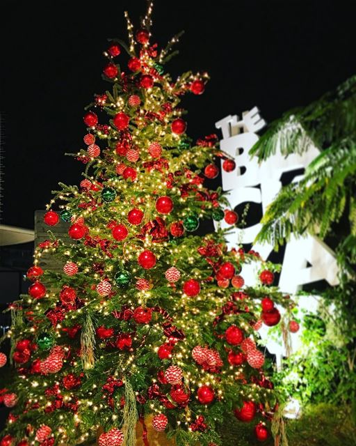 christmas decoration at @thebackyardhazmieh. christmas2016 decor ... (The Backyard Hazmieh)