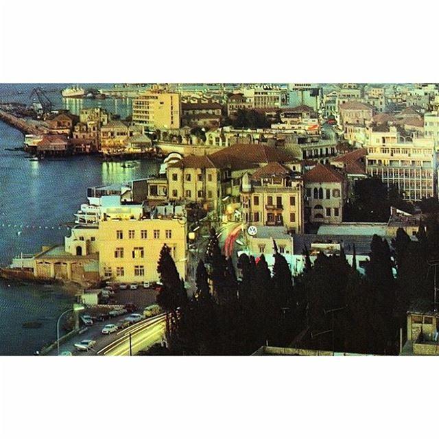 بيروت الزيتونة عام ١٩٦٩