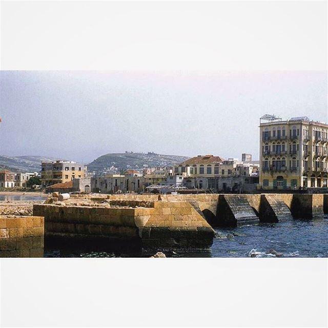 صيدا عام ١٩٥٤ ، Saida in 1954