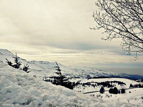 lebanon north cedars bcharre livelovelebanon livelovebcharre winter...