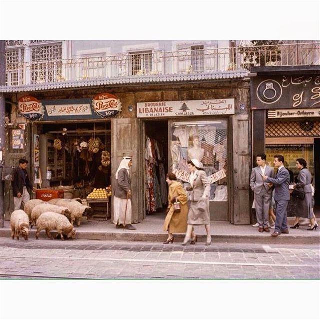 بيروت باب ادريس عام ١٩٥٥