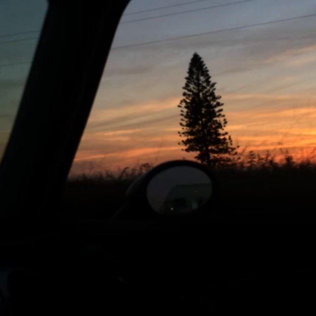 Sunset Highway! Speed needforspeed Monday Today Lebanon Jbeil ...