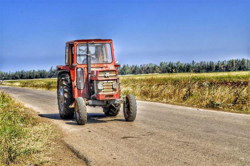 On The Road __________________________________@liveloveakkar stephanie ... (`Akkar, Liban-Nord, Lebanon)
