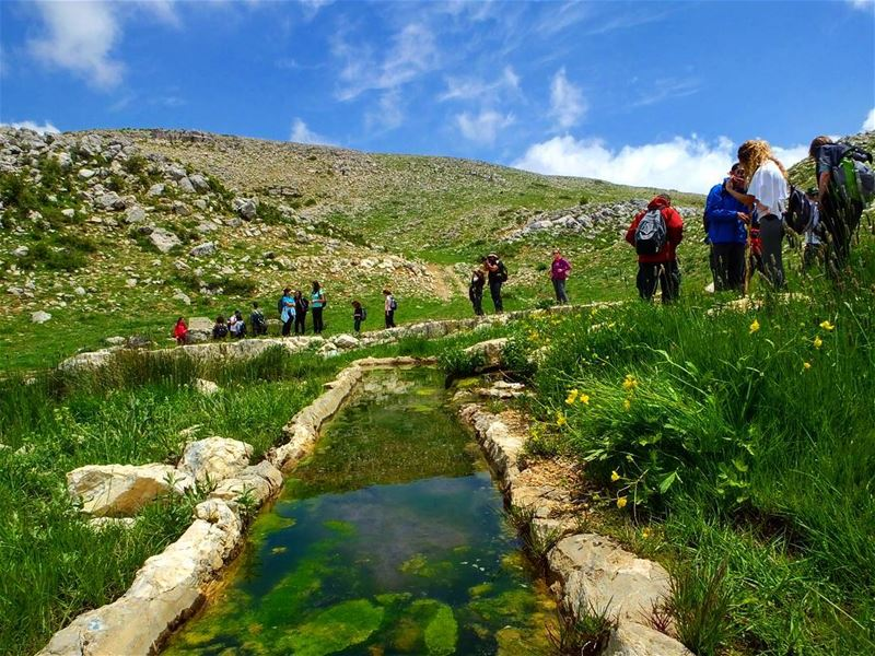 hiking  hikinglebanon  hrajel  qahmez   lebanon  green  culture ...