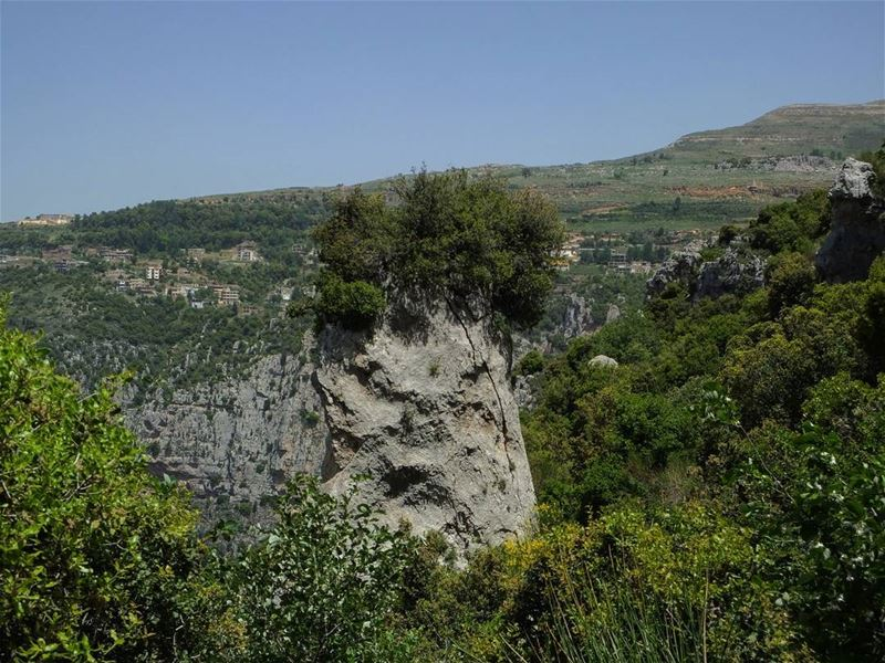 hiking  qannoubine  qannoubinevalley  annoubine  lebanon  green  culture ...