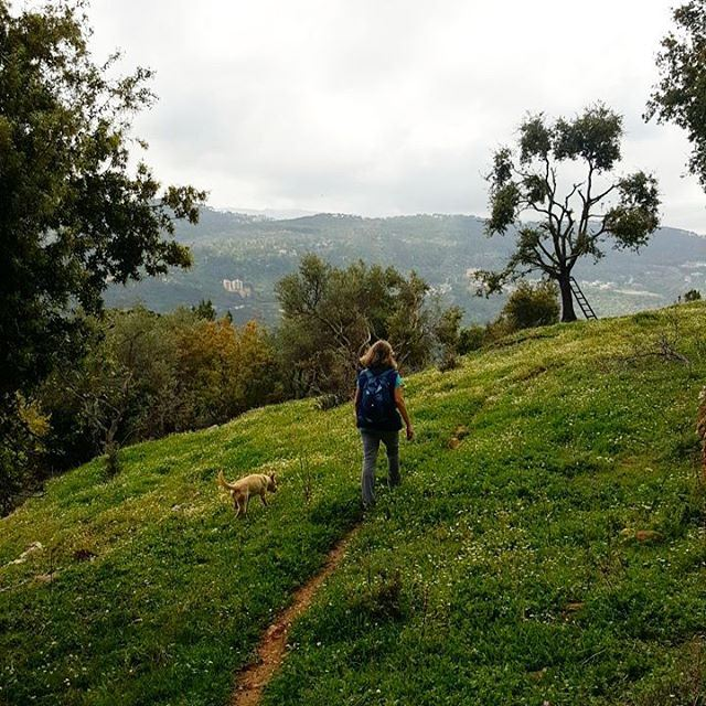 hiking  beitmery  lebanon  green  culture  backpacking  travel ... (Broummâna, Mont-Liban, Lebanon)