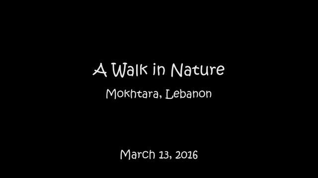 hiking mokhtara shouflebanon shouf authenticshouf mountlebanon ...