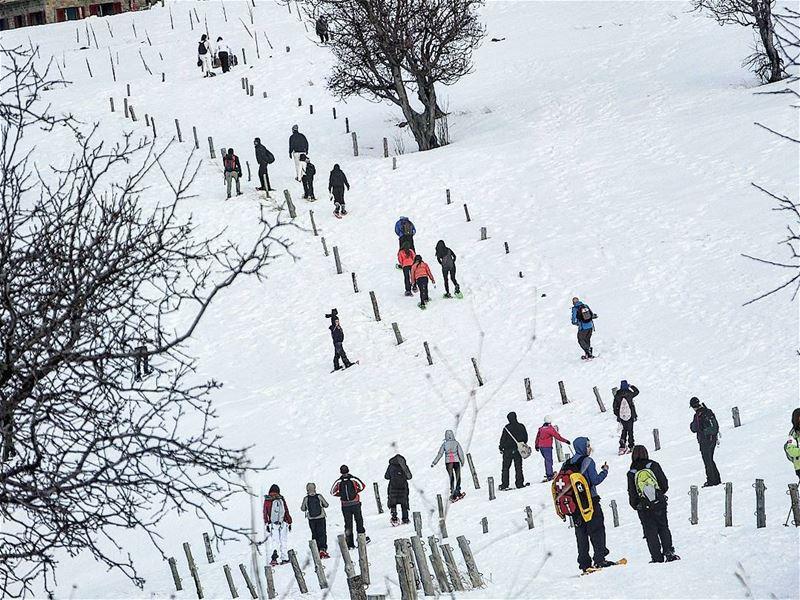 promaxsports tannourine tannourinereserve snowshoeing ... (Tannourine, Liban-Nord, Lebanon)