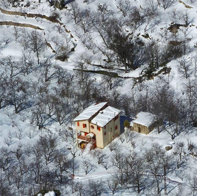promaxsports ehdenspirit ehden ehdenforever ehdenreserve snowshoeing... (Ehden - La Reserve)