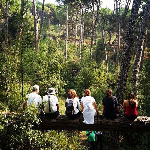 promaxsports hiking lebanese trails hikinglebanon green culture ... (Broummâna, Mont-Liban, Lebanon)