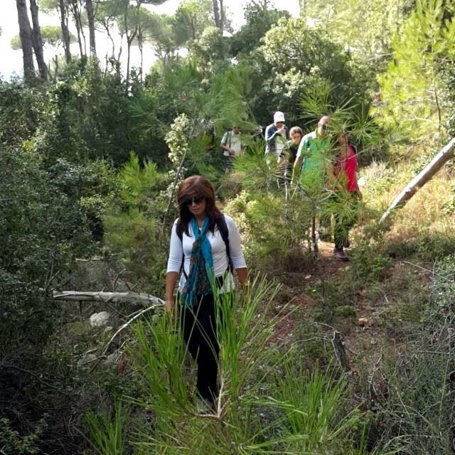 promaxsports hiking lebanese trails hikinglebanon green culture ... (Brummana)