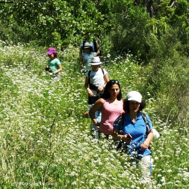 corporate  events  team  trail  wild  adventure  walk  nature  family ...