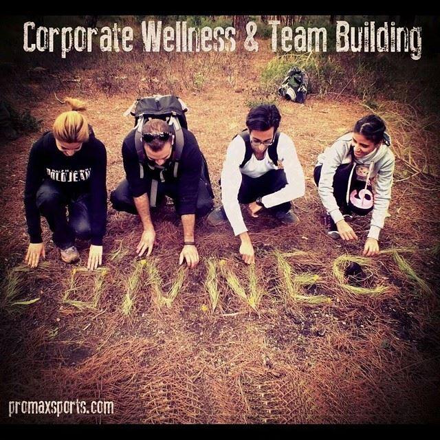 promax teamwork teamgames communication creative environment nature...