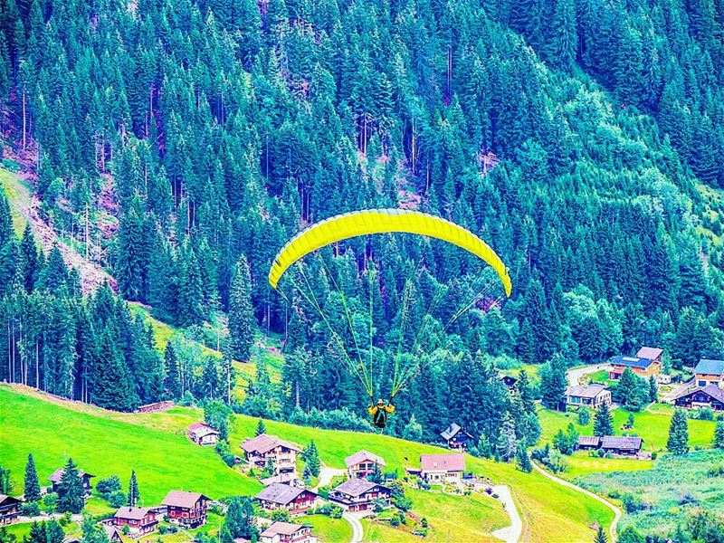 switzerland ig_lebanon ig_naturelovers parapente paragliding forest ... (Le Lac Noir)