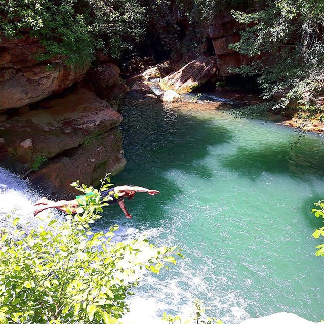 Beautiful reserve water nature from the chouf district lebanon...