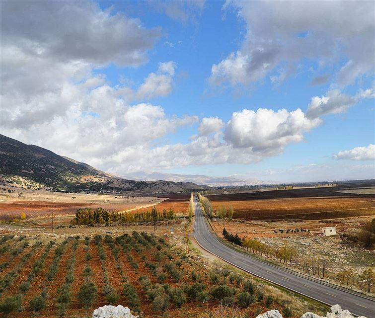From west bekaa with love  bekaavalley  westbekaa  agriculture  farm ...