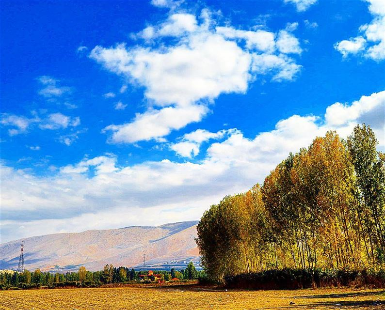 """""""The beauty of nature is everywhere"""" trees mountains sky clouds ..."""