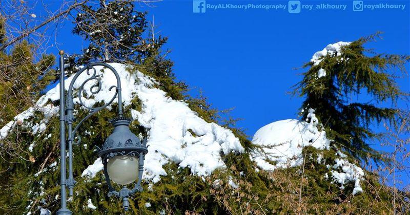 ehden RoyALKhouryPhotography livelovelebanon liveloveehden snow ... (Ehden, Lebanon)