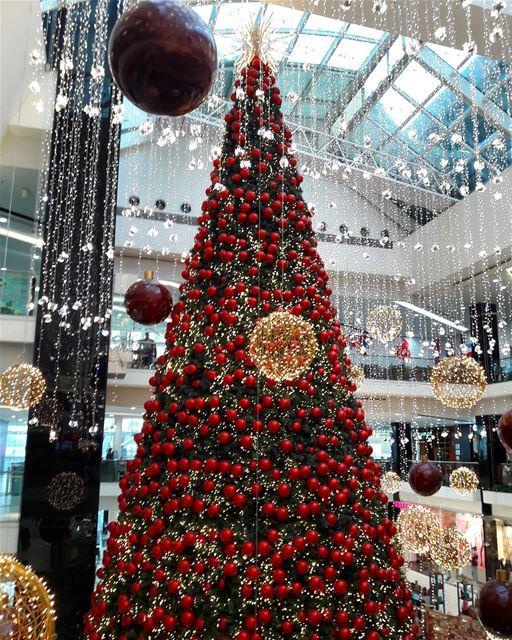 christmas in lebanon LeMall Dbayeh @lemall_lb RoyALKhouryPhotography ... (Le Mall Dbayeh)
