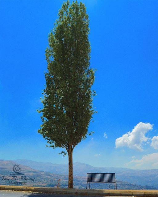 Good morning Lebanon 🇱🇧 liveloveehden ehden northlebanon nikon ... (Ehden, Lebanon)