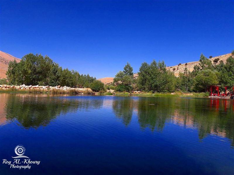 RoyALKhouryPhotography reflection waterreflection bluesky lebanon ... (عيون ارغش)