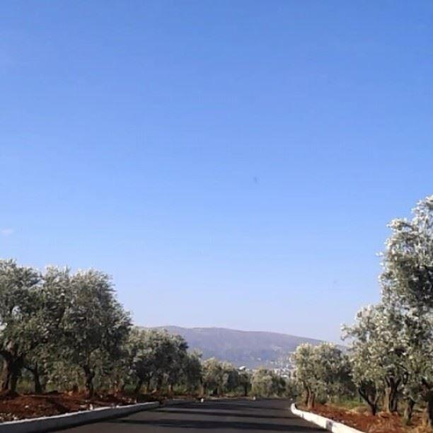 J'ai deux amours Beirut et Paris by @tania_kassis ★☆☆★☆☆★☆☆★☆☆★ lebanon...