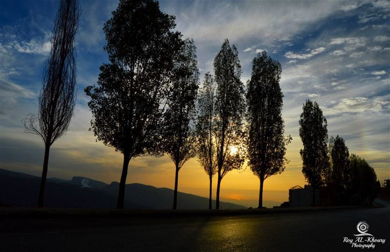 تسكرت لبيوت و فضيت من ناساسكتت الساحات و فلو أحباباو صارت الطريق مطار للش (Ehden, Lebanon)