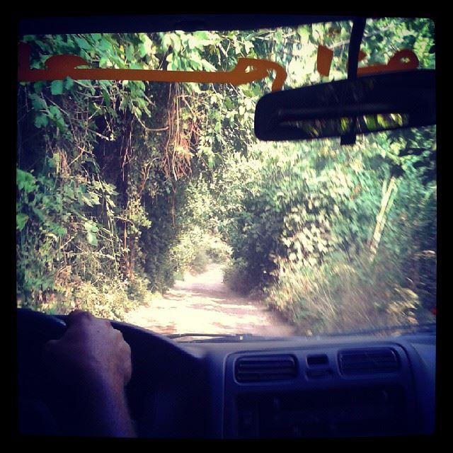 safari aboujoseph boujouzéf zouzou_bus wadi_kanoubin kadicha_valey...