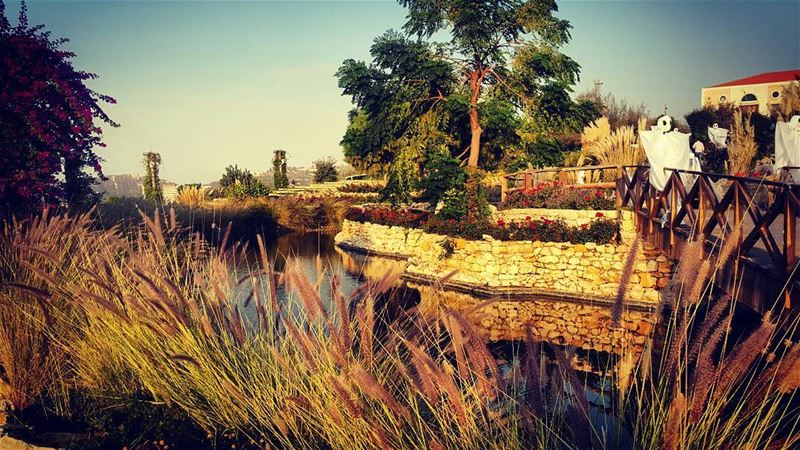 VACAY🌴 arnaoonvillage precelebration whatsaplebanon livelovelebanon ... (Arnaoon Village)