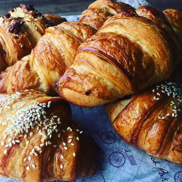 fresh daily croissant chocolate thyme cheese plain Frenchbakery ...