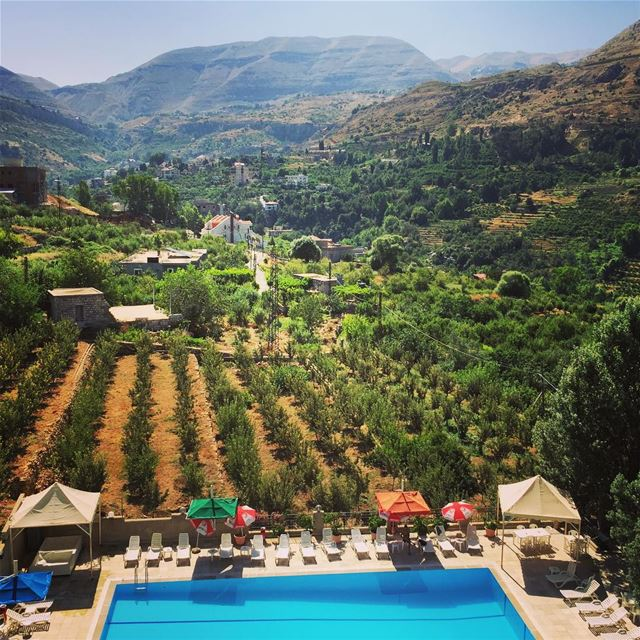 nature green trees mountain blue pool lovely weather Faraya Lebanon...