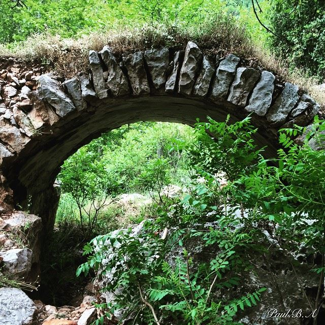 nature green old bridge Lebanon...