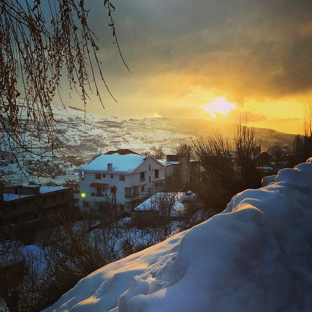 nature white snow golden sun clear sky lovely weather cold Faraya Lebanon...