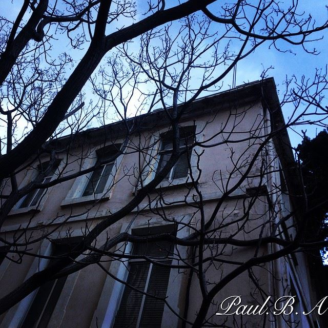 old house naked tree wind cold grey blue sky weather Hamra Lebanon...
