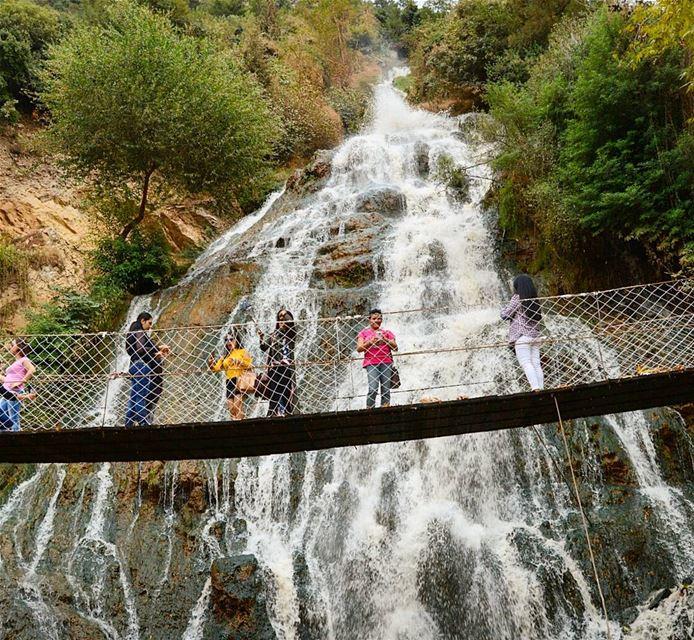 Splendid view😍 waterfall bridge photography naturephotography ...