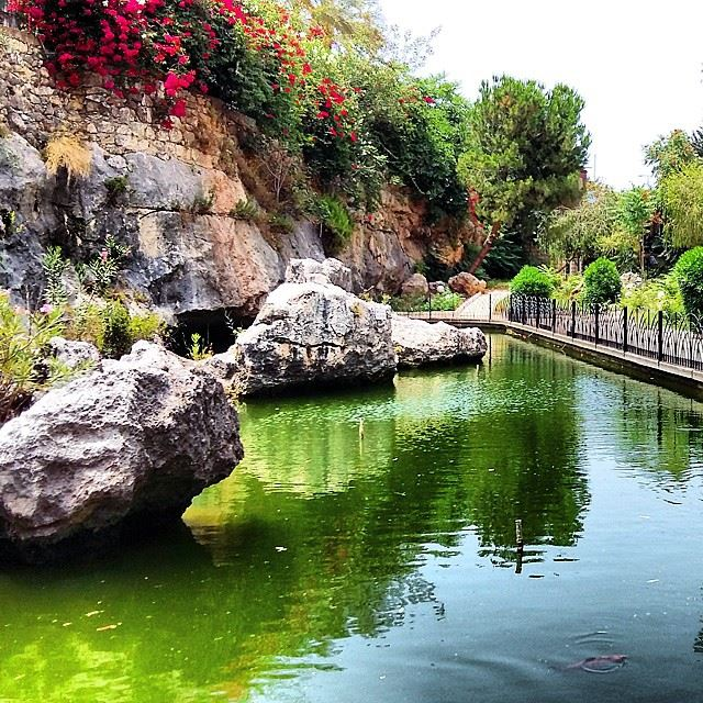 Touring  jounieh  artificial  water pond summertime  rocks flowers...